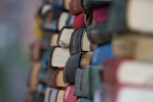 500 Lifetimes of Books & the Screwmeneutical Imperative